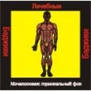 Мочеполовая система - гормональный фон (здоровье) - аудио CD к машине для зарядки воды в ванной и для зарядки бейджиков
