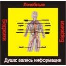 Душа - записи информации (здоровье) - аудио CD к машине для зарядки воды в ванной и для зарядки бейджиков