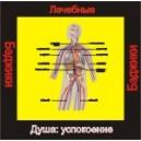 Душа - успокоение (здоровье) - аудио CD к машине для зарядки воды в ванной и для зарядки бейджиков