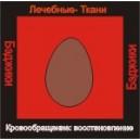 Кровообращение Восстановление (здоровье) - аудио CD к машине для зарядки воды в ванной и для зарядки бейджиков