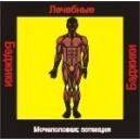 Мочеполовая система - Потенция (здоровье) - аудио CD к машине для зарядки воды в ванной и для зарядки бейджиков