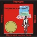 Нервная система - аудио CD к машине для зарядки воды в ванной и для зарядки бейджиков