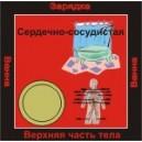 Сердечно-сосудистая система - аудио CD к машине для зарядки воды в ванной и для зарядки бейджиков