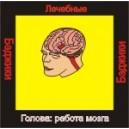 Голова: работа мозга - бейджик