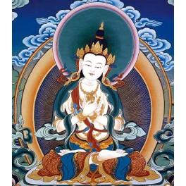 Включение в канал Будды Ваджрасаттвы. Освобождает от ментальных страданий - Авиценна