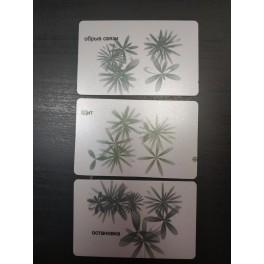 Комплект карт «Щит, остановка, обрыв связей»