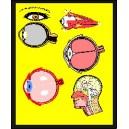 Зрение - видеозаклинание
